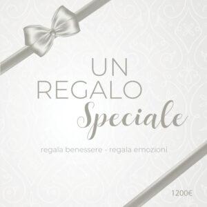 Buono Regalo Silver Shiver da 1200 euro